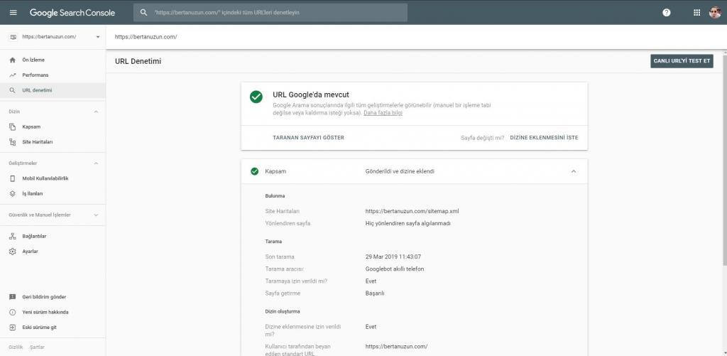 Search Console - URL Denetimi