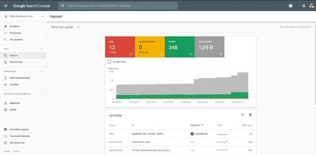 Search Console - Kapsam